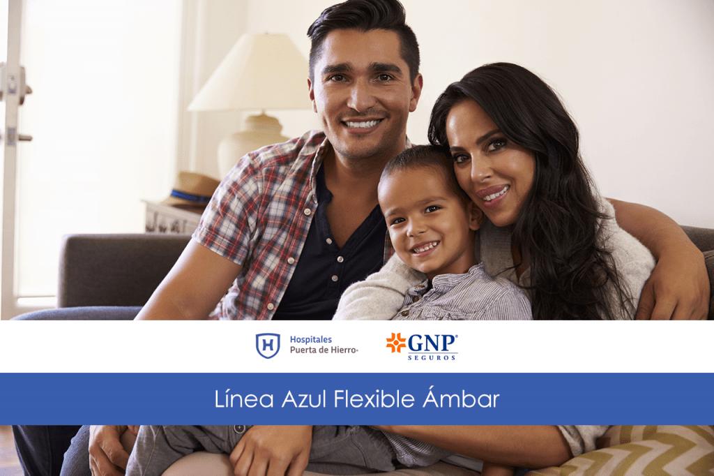 GNP seguros familia